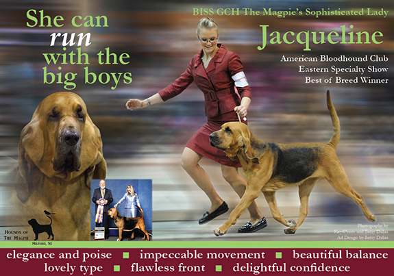 Jacqueline AKC Weekly Winners Gallery_WEB FINAL NEW MAY 15