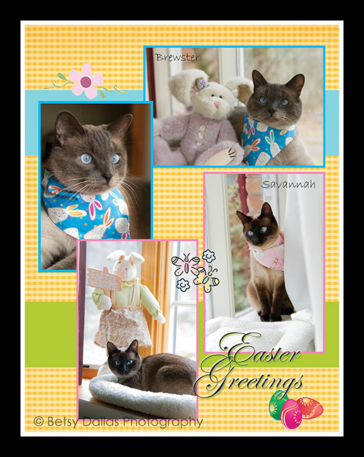 Brewster & Savannah Easter 2014_web_frame